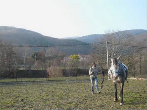 Debourrer un cheval aux rênes longues Loutte10