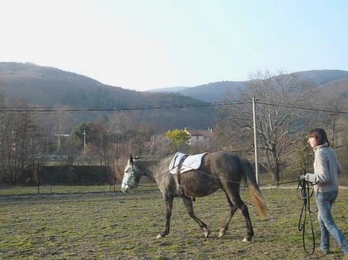 Debourrer un cheval aux rênes longues Loutte12