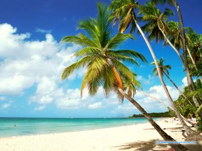 Anse de la source, la digue, seychelles,ocean indien 23269710