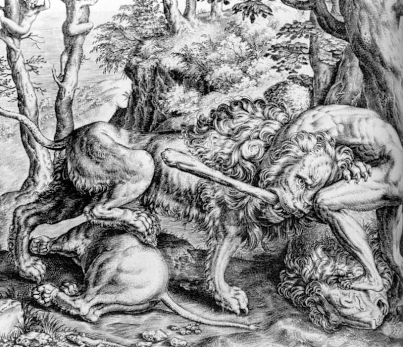 Héraclès Heracl15