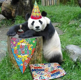 Joyeux Anniversaire GROUK. Pandan10