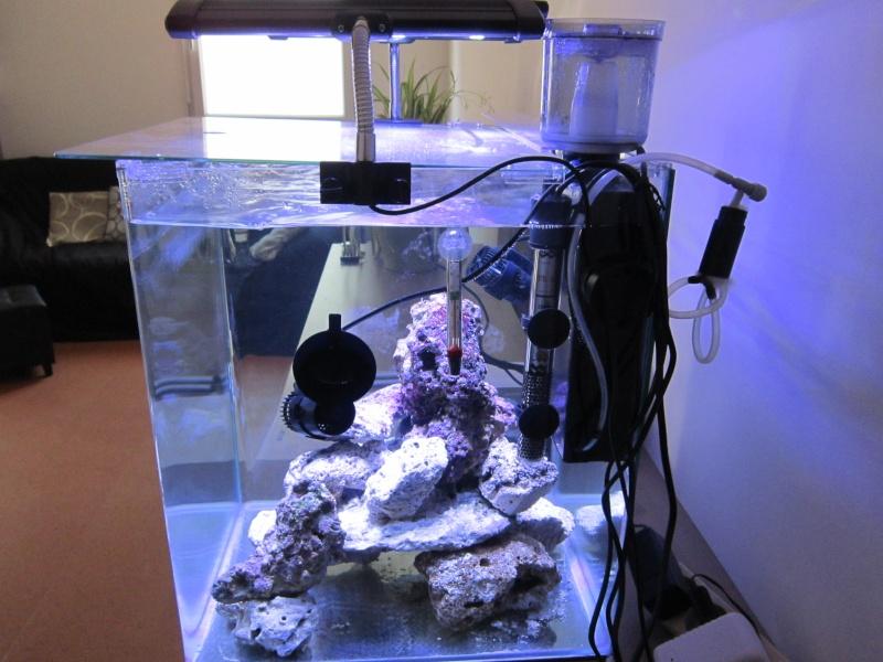 Un nouveau avec un nouveau Nano de 60 litres Cota_t10