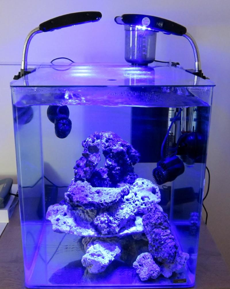 Un nouveau avec un nouveau Nano de 60 litres Nano_e10