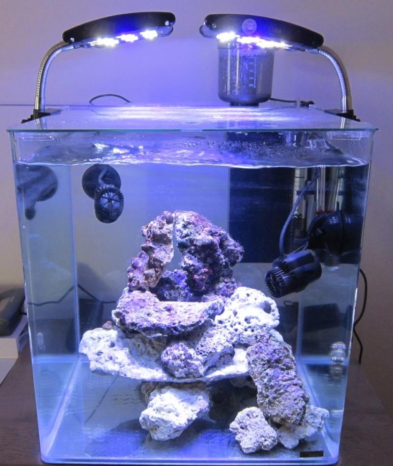 Un nouveau avec un nouveau Nano de 60 litres Nano_e11