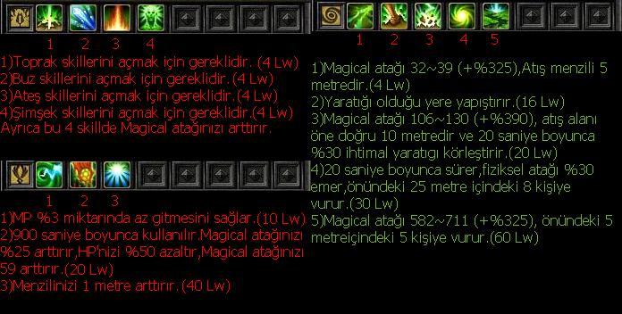EUROPA SKİLLERİ.. Wizard10