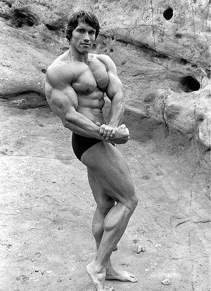 Arnold Schwarzenegger 11710