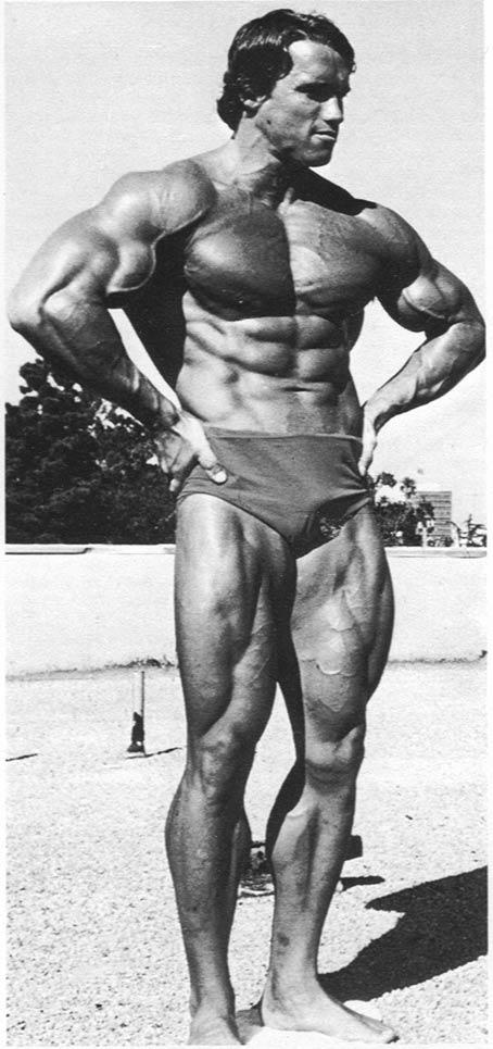 Arnold Schwarzenegger 11910