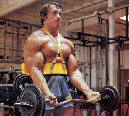 Arnold Schwarzenegger 12410