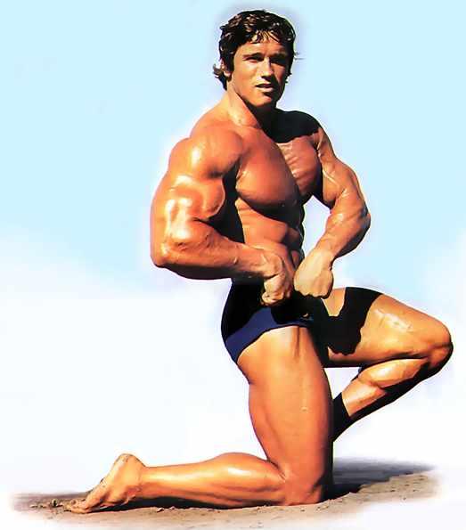 Arnold Schwarzenegger 2710