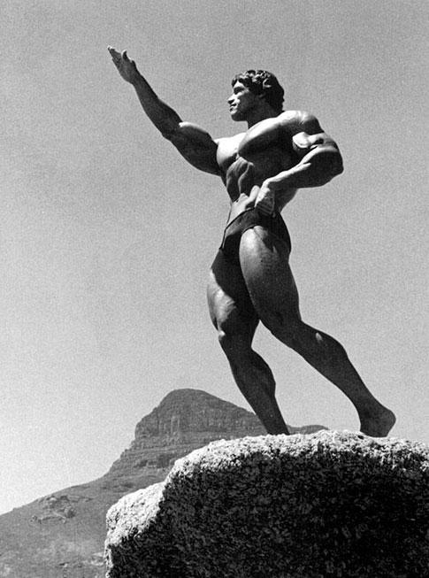 Arnold Schwarzenegger 4010