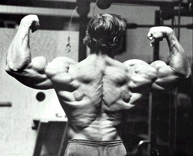 Arnold Schwarzenegger Photo_10