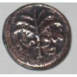 Bronce de Judea de la rebelión de Bar Kochba (134-135 d.C.) Img10