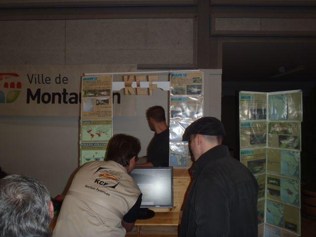 Bourse de Montauban ce week end - Page 2 Pb040036