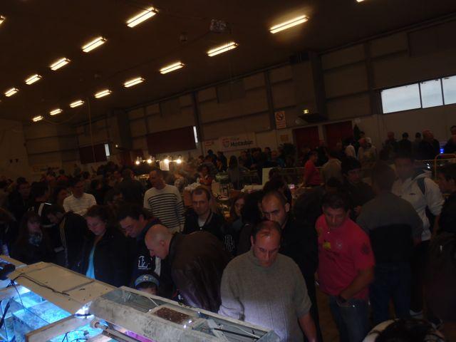 Bourse de Montauban ce week end - Page 2 Pb040127