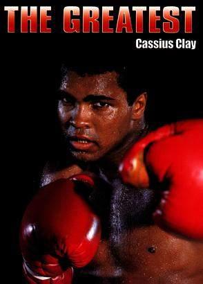 Фотографии боксёров 10110