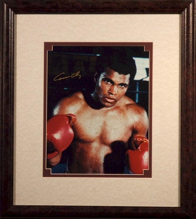 Фотографии боксёров Clayph10
