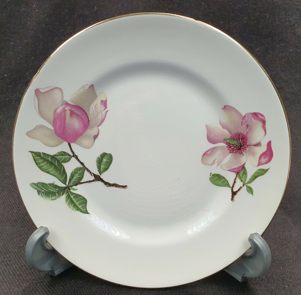 Pink Magnolia flowers no namer 20210510
