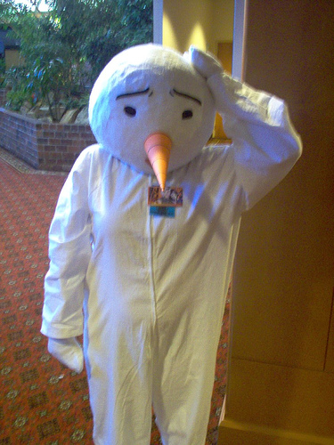 cosplay  plue 75993310