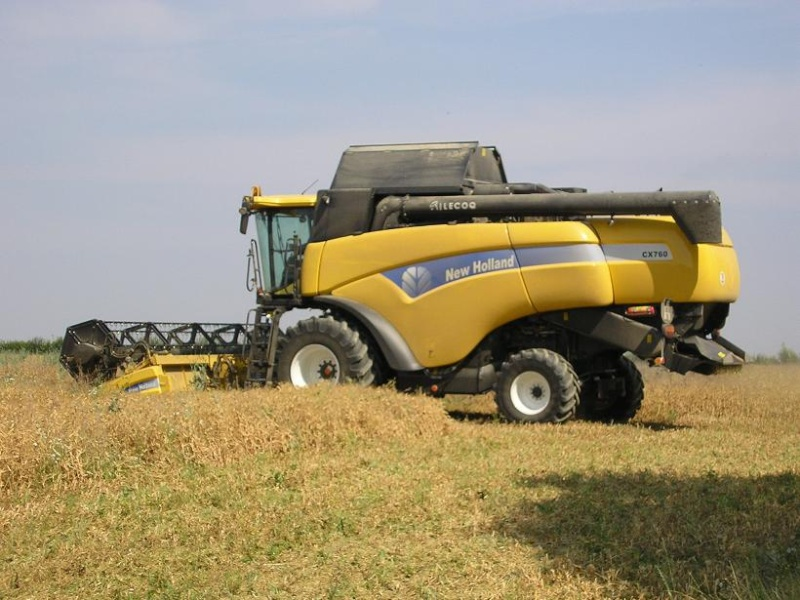 New holland P7190010