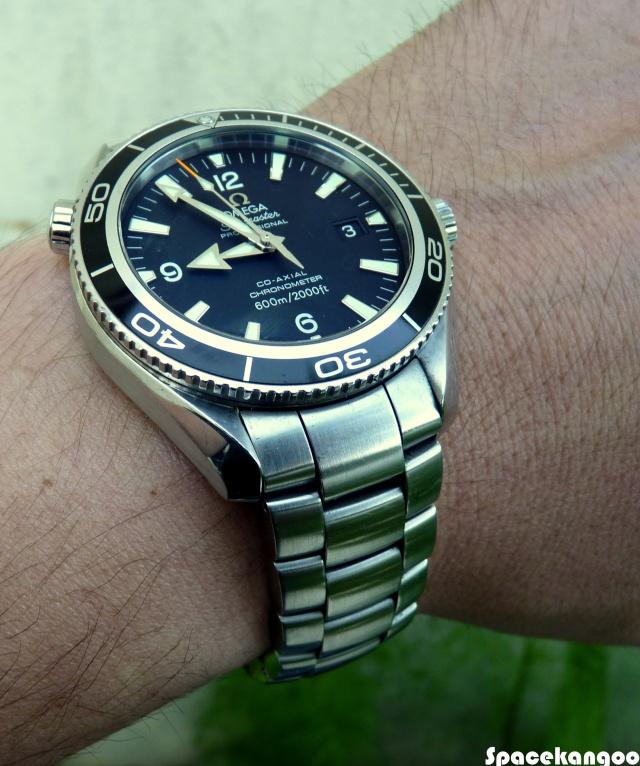 Quelle montre pour 2500-2900 ?? P1010315