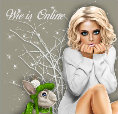 Wie is er online?