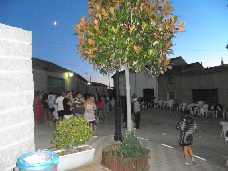 Fiesta de la Convivencia en San Román del Valle, 2011 Fiesta10