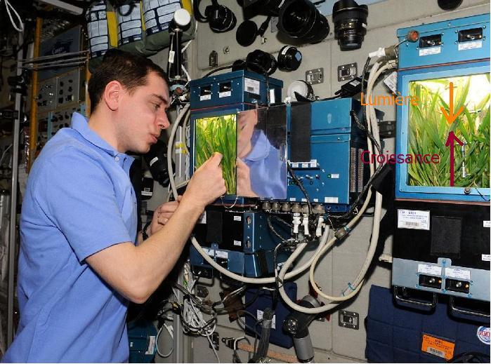 [ISS] Expedition 29: Déroulement de la mission. Croiss11