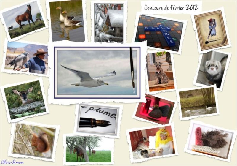 Concours du mois de février 2012. Thème : A poils ou à plumes - Page 2 Concou11