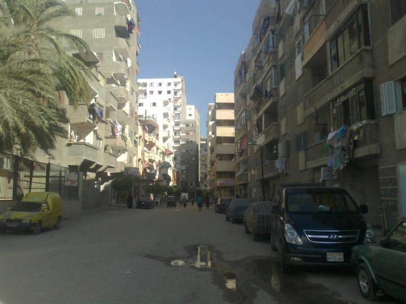 شقة للإيجار قانون جديد غرفتين وصالة مدة كبيرة – المعمورة البلد – الإسكندرية  20110810