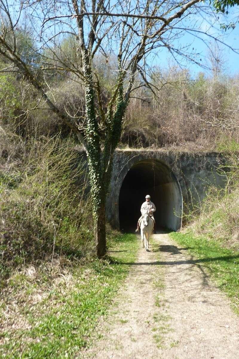 """""""Beau Dimanche"""" à Montrigaud... (Itinéraire.) P1030029"""