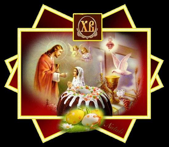 XH.Zoov Ntxheb Yaj Nthuav Ntawv Ntshiab. 22105710