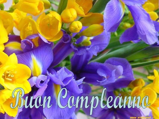 BUON COMPLEANNO IOLE Copm212