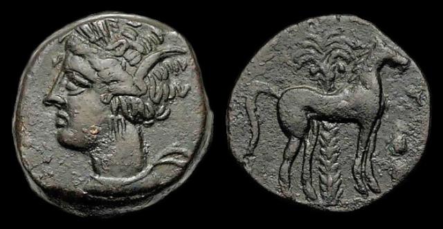 Monnaie carthaginoise (suite de mon incursion en Afrique) Cop_1010