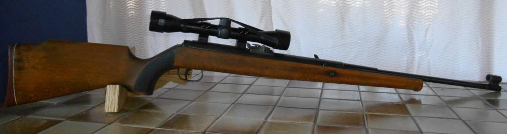 Mes différentes armes Dscn5412