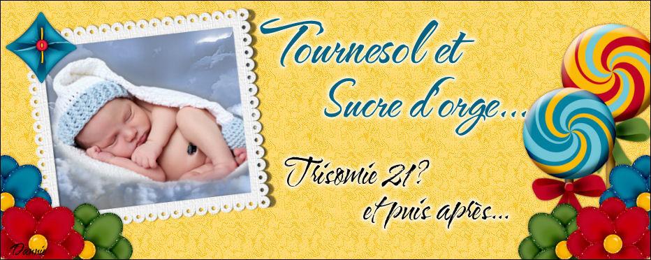 Tournesol et Sucre d'orge.  La Trisomie?  Puis après?