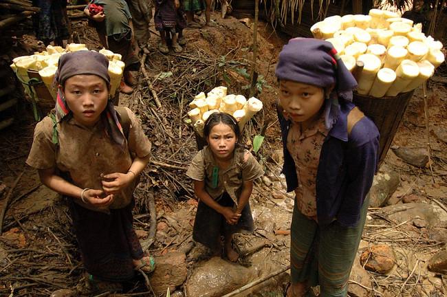 Tshuaj Ntsuab - Page 3 Laos-j10