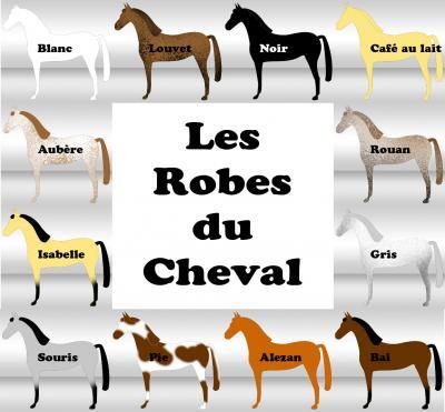 Des robes des chevaux Id46310
