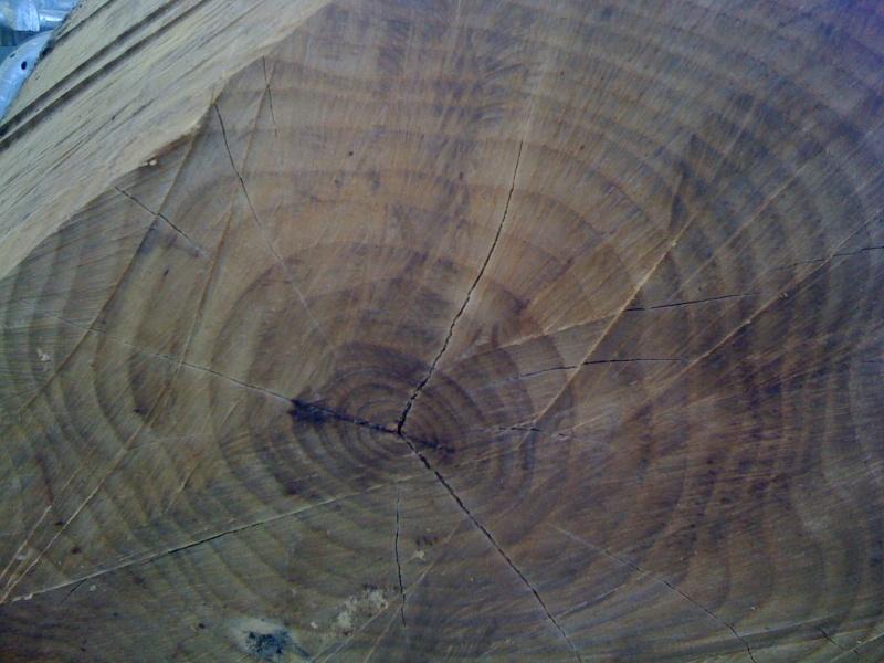 comment secher le bois sans qu'il se fende? - Page 2 Img_0210