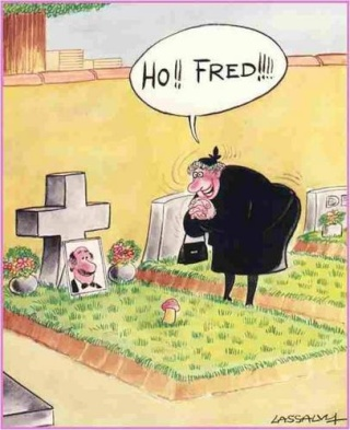 Image drôle - Page 2 Humour11