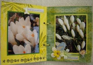 Mini: Par une belle journée de printemps Dsc06914