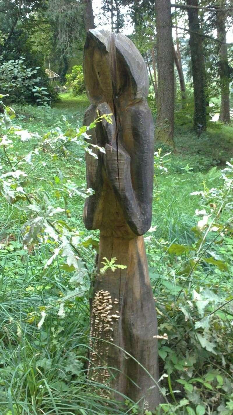 vieillissement du bois 16092012