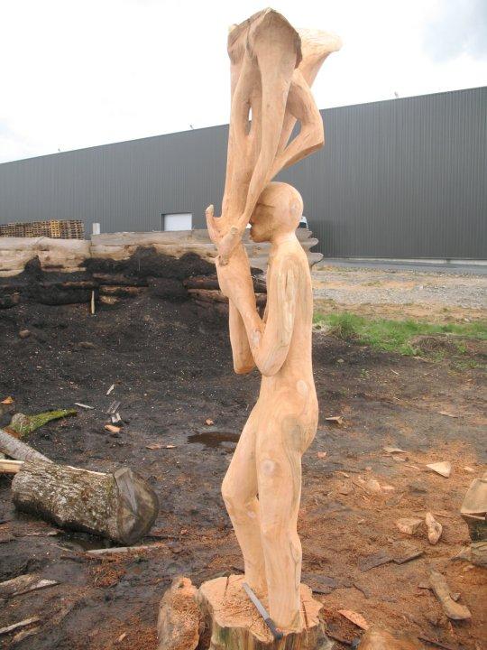 vieillissement du bois Invoca10