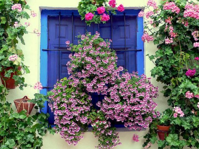 Espagne-Photos & cartes postales-us&coutumes - Page 2 Cordob10