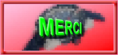 """N °  41 PFS """" Fond Bannière """" :"""" Effet Mosaïque"""" - Page 2 Mozaiq10"""