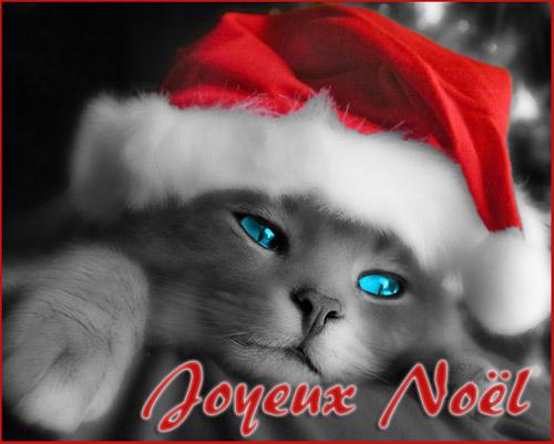 "Avatars ""Noël"" Noel210"