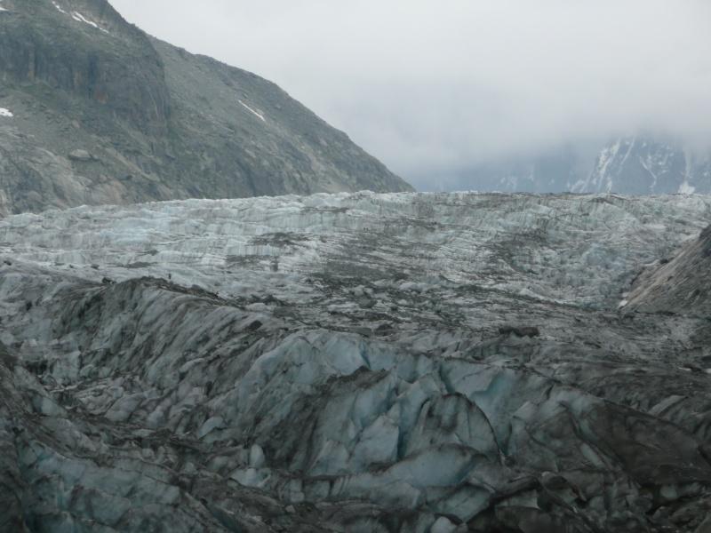 Point de vue du glacier d'Argentière P1020114