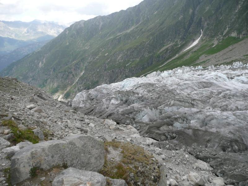 Point de vue du glacier d'Argentière P1020115