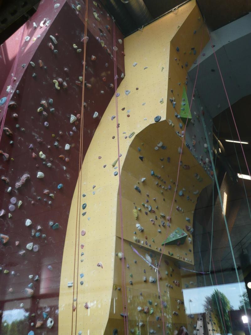 Salle d'escalade AREA Herstal Belgique P1020413