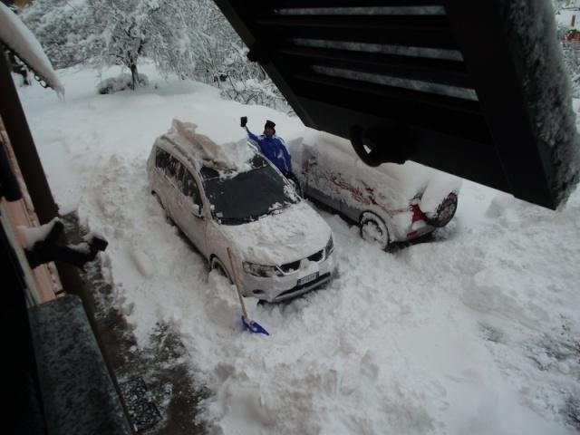 Gippo under snow Dscf3510
