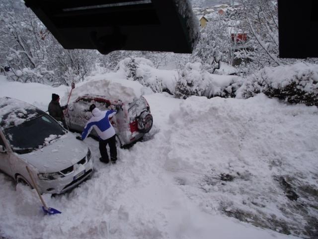 Gippo under snow Dscf3511